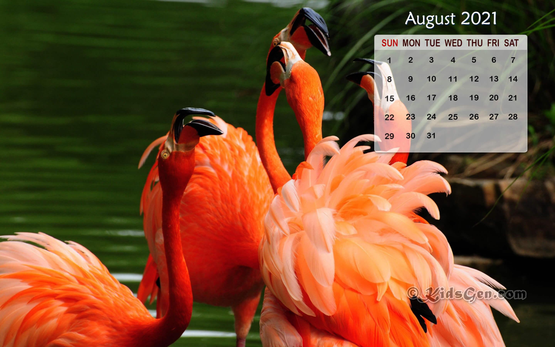 August 2021 Desktop Background Calendar Wallpaper