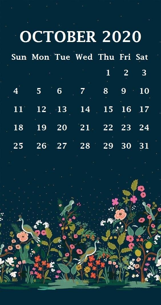 Cute October 2020 iPhone Calendar Template
