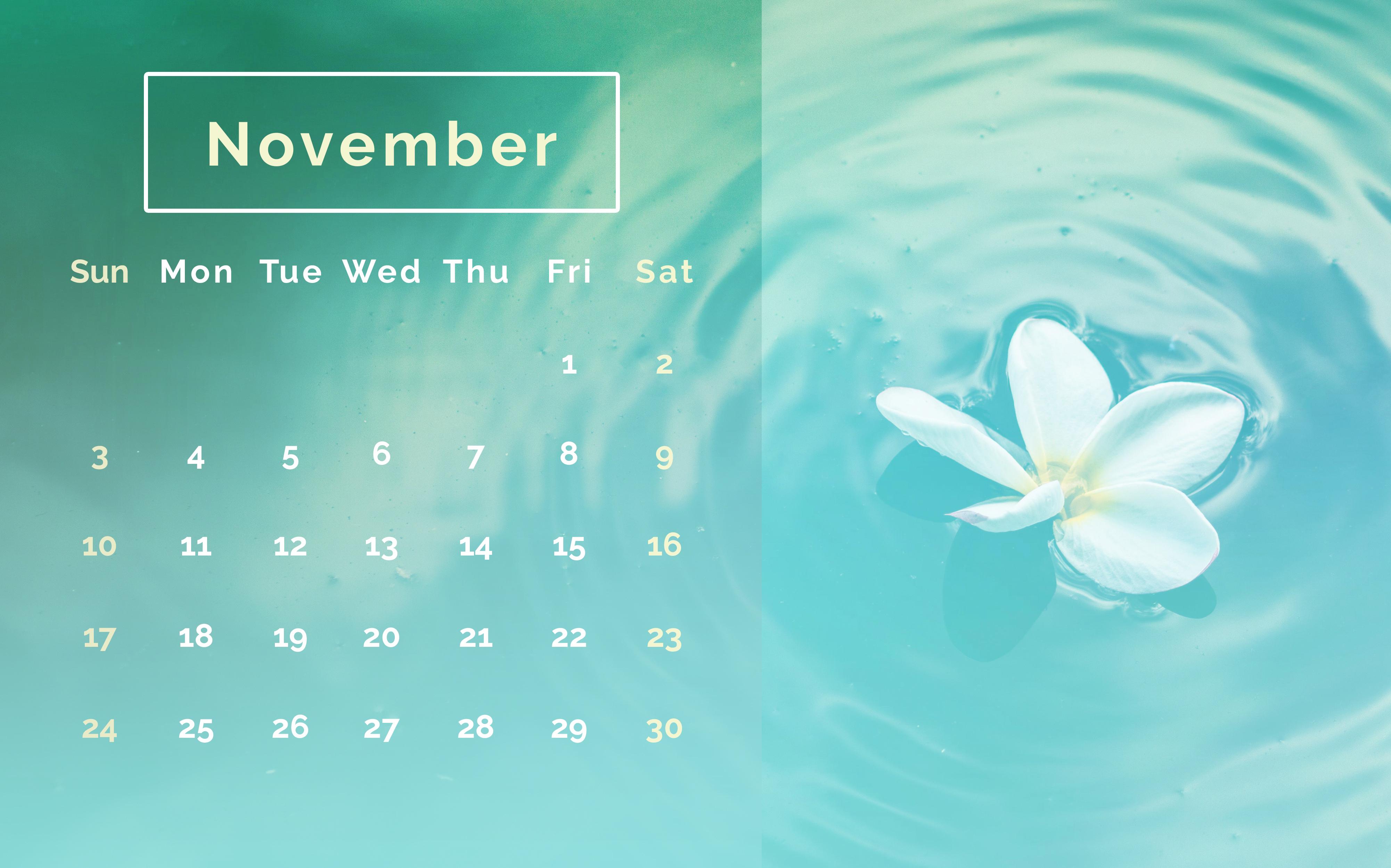 Floral November 2019 Calendar Wallpaper